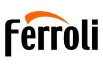 Ferroli Diverters Valves