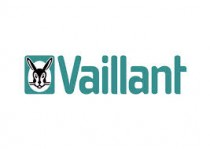 Vaillant Gas Section & Gas Valves